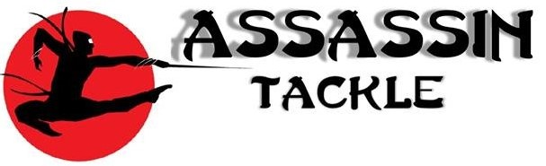 assassintackle.com